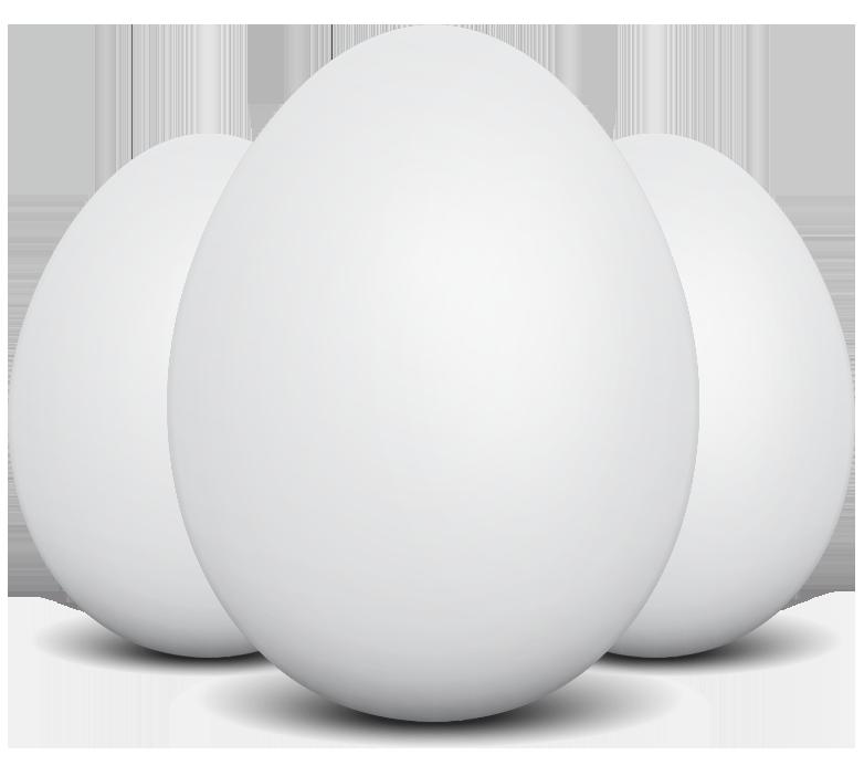 Best Egg Brand